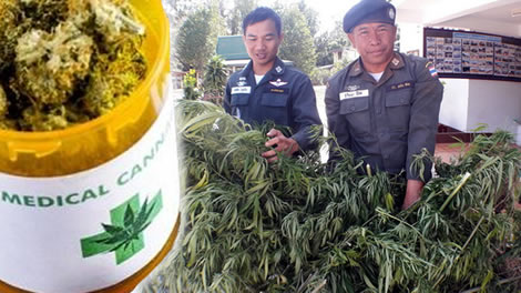 Medical cannabis soon available in Thailand through Health Ministry