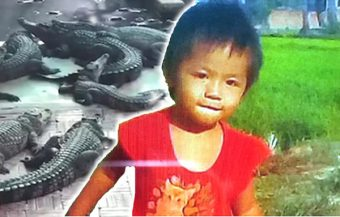 Mother cradled daughter's head after crocodiles ate her as family crocodile farm is to be sold, father takes blame