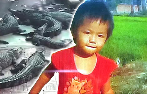 crocodile-farm-crocodiles-eat-daughter-siem-reap
