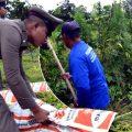 Thai police in Nakhon Ratchasima raid farm with marijuana crop growing at its heart on Tuesday