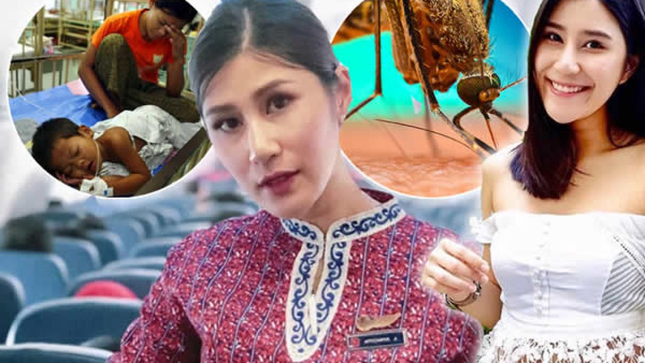 Thai woman dies from a female mosquito bite as deaths and