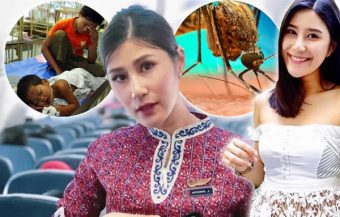 Thai woman dies from a female mosquito bite as deaths and infections from dengue spike