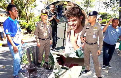 phuket-monkeys-tourists-monkey-hill-police-signs-tourist-bitten-toah-sae-hill