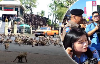 Rival monkey kingdoms fought a pitched battle in the Thai city of Lopburi on Wednesday morning