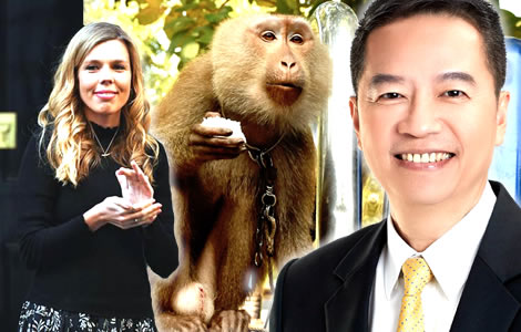 uk-pm-partner-carrie-symonds-targets-thai-coconut-trade-monkeys-animal-rights