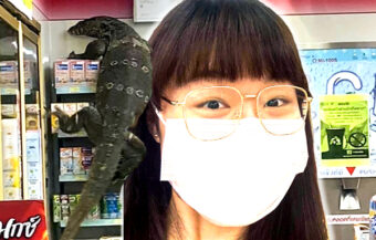 Giant lizard makes world news from the Thai city of Nakhon Pathom in search of a cool one at 7/11
